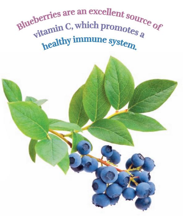 blueberries-001